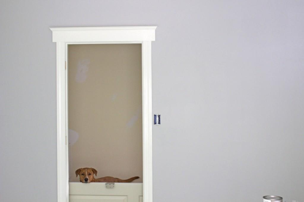 upgrading your door trim