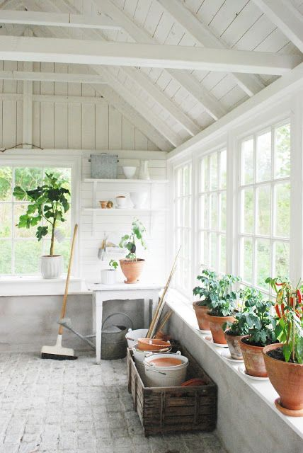 white interior potting shed