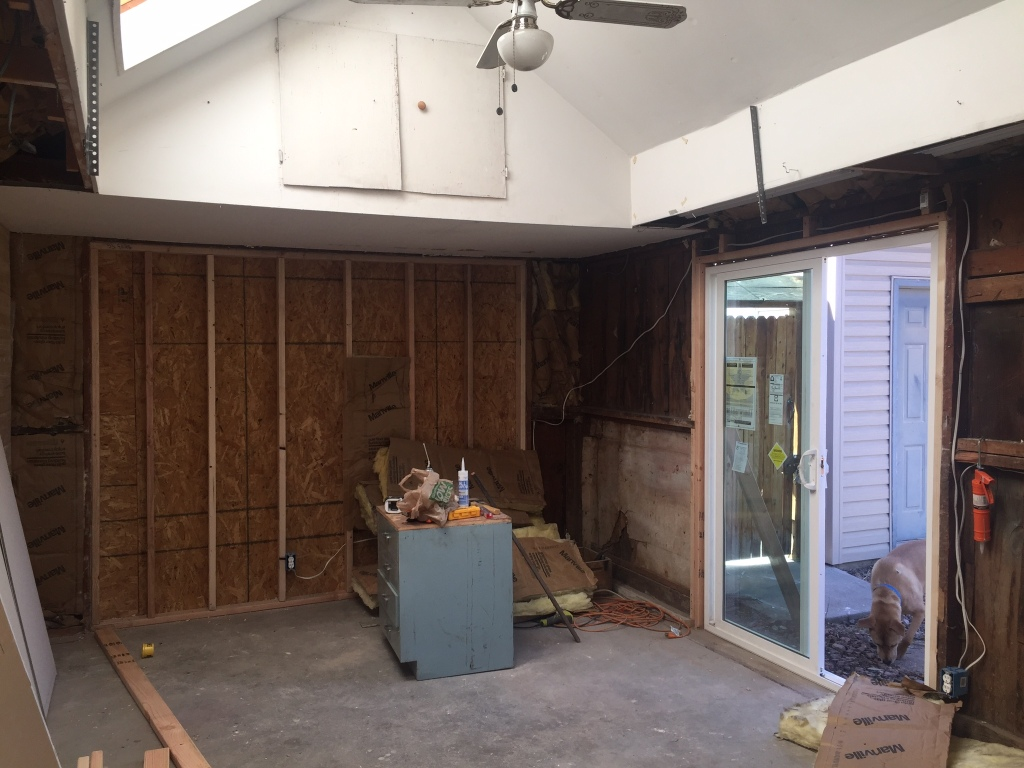 Garage renovation story