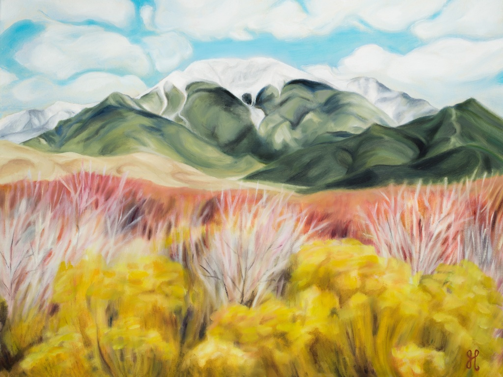 Colorado local artist