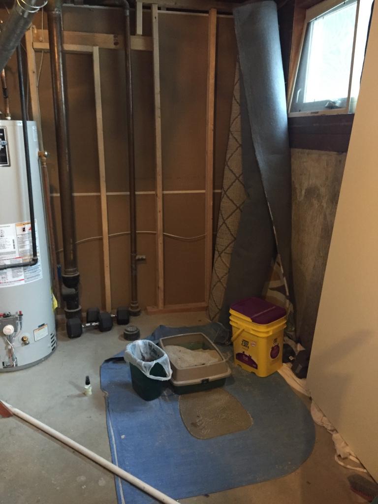basment-bathroom-remodel
