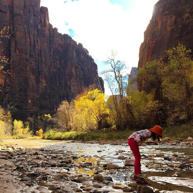 zion-np