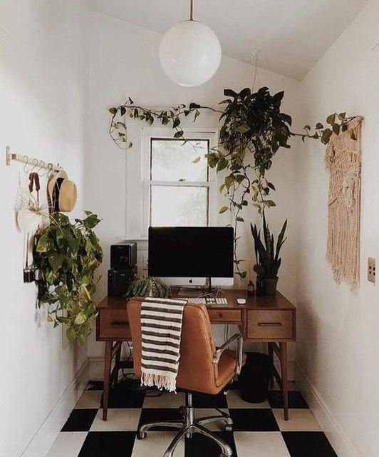 plants in small office